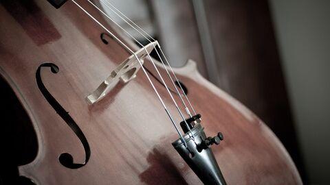 Laureates of the Queen Elisabeth Competition: cello