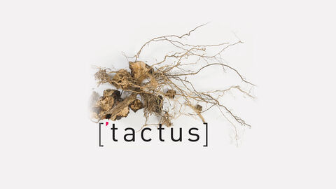 ['tactus] Young Composers' Forum + Brussels Philharmonic