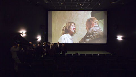 Our new film programme is now available online!