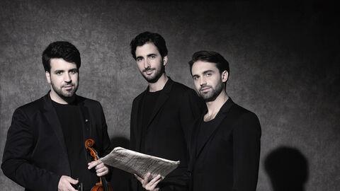 Trio Zadig