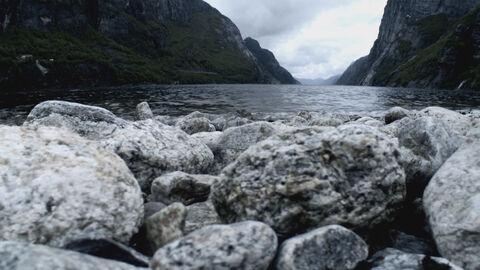 L'avis des mouches + Norway's Magical Fjords