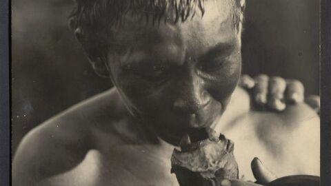 Twee documentaires van Markies de Wavrin