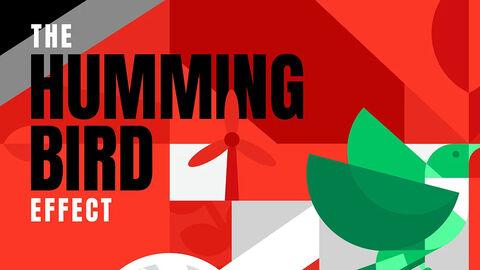 TEDxULB - The Hummingbird Effect