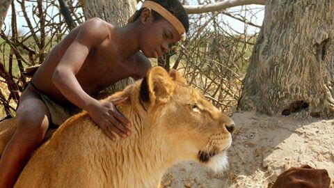 Het leeuwenkind
