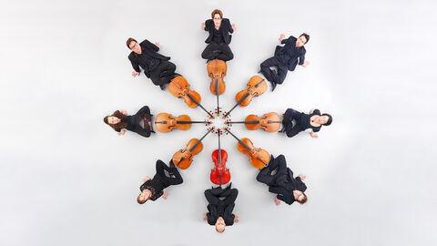 Het feest van de cello