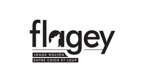 Flagey's Jonge Wolven